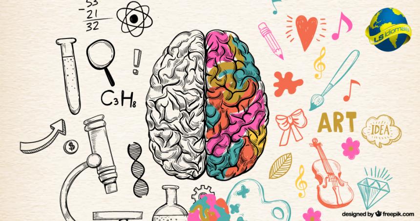 4 dicas da neurociência para aprender um idioma mais rápido